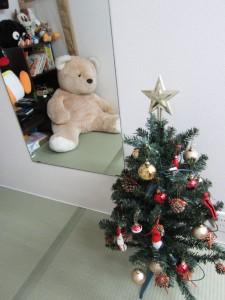 サンタに続き・・・クリスマスツリー登場っ!!