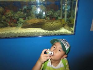 高島屋水族館