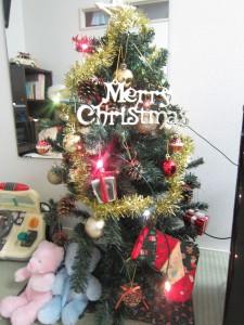 もうすぐクリスマスっ!!